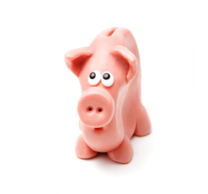 skinny piggy bank2